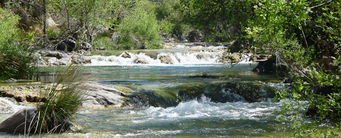 Fossil Creek -  Colorado - USA